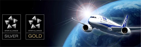 ANA提携航空会社特典航空券に交換