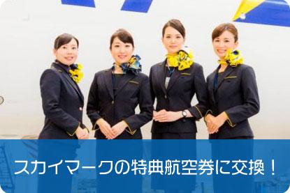 スカイマークの特典航空券に交換!